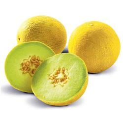 Melon żółty szt.